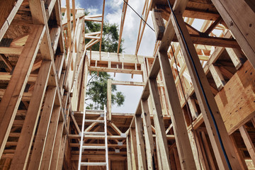 Extension Ladder and Framing