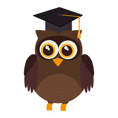 owl graduate hat animal bird academic cartoon vector illustration isolated
