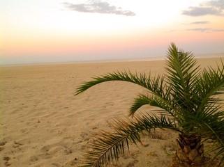 sunrise in the island