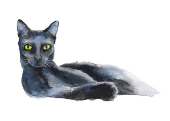 black cat. a stand-alone sketch. the symbol of Halloween. waterc
