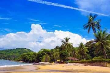 brazilean tropical beach Wall mural