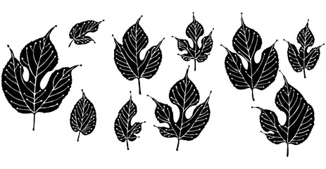 Mulberry tree leaves, solid with stylized veining vector art illustration