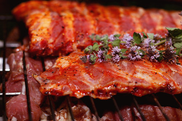 meat skewers on the barbecue coals