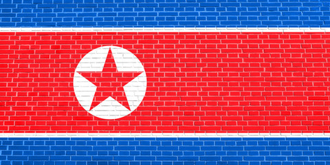 North Korean flag on brick wall texture, DPRK