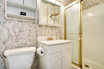 Classic American bathroom interior with vanity cabinet and toilet
