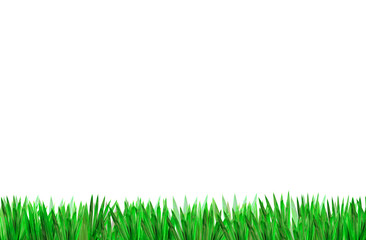 Green grass for backgrounds on white