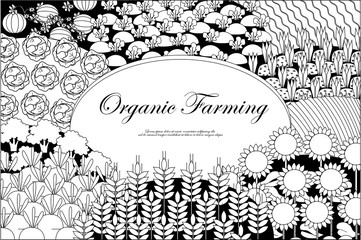 Organic farming background. Frame with plenteous fields landscape. Place for text. Agriculture background. Black and white.