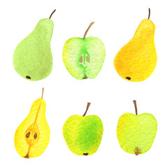 Vector watercolor apples, pears, half an apple and half and pear