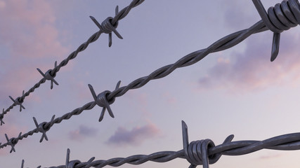 Barbed wire against evening pink and blue cloudy sky, 3d rendering