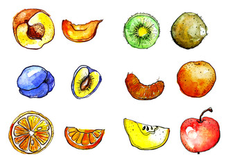 Watercolor set - fruit and slices in the cut. Illustration, drawing - 