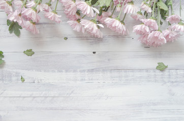 Chrysanthemums on a rustic wooden background
