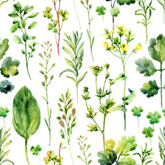 Watercolor meadow weeds and herbs seamless pattern