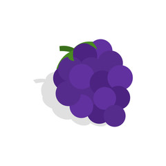 Bunch of blue grapes icon in isometric 3d style on a white background