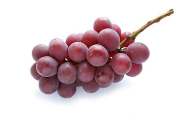 Japanese juicy grape isolated Fototapete