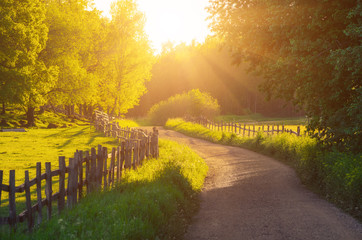 Foto op Plexiglas Oranje Rural Sweden summer sunny landscape with road, green trees and wooden fence. Adventure scandinavian hipster concept