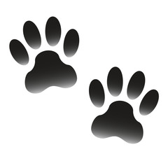Paw prints of animal isolated on white background. Pawprints icon or sign. Vector illustration.
