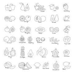 Vector set of hand drawn ink fruit and berries icons.