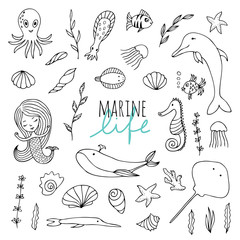 Vector set of marine life.