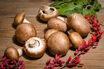 Fresh mushrooms on wooden background