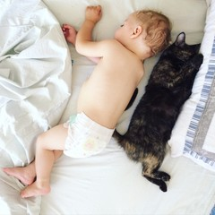 adorable baby boy sleeping with cat