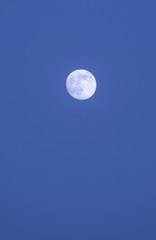 Full moon over Vama Veche village, Romania