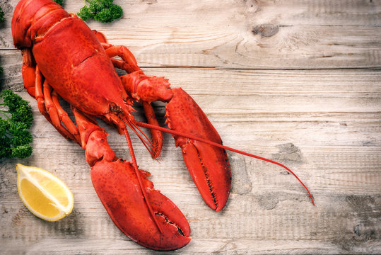 Steamed lobster with lemon on wooden  background