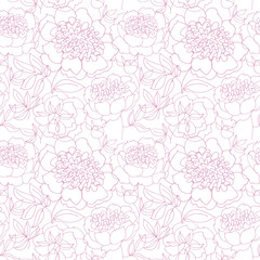 rosy peony floral sketch. spring flower vector illustration. bla