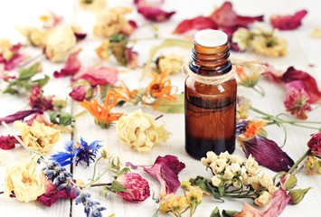 Bottle of herbal infused essential oil, amidst different colorful dried medicinal herbs and flowers mix.