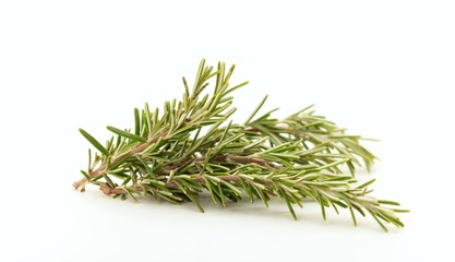 Rosemary twig on white background