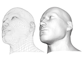 Polygonal head