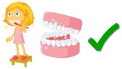 The correct way of brushing teeth