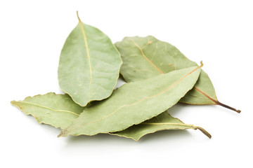 group of dried bay leaves, isolated