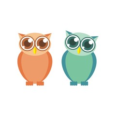 Owl illustration vector