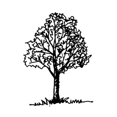 Doodle tree icon hand draw illustration design