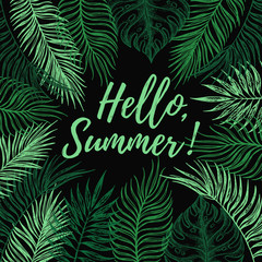 Hand drawn vector illustration - Hello, Summer. Summer tropical