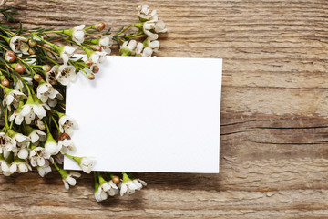 Blank card among chamelaucium flowers (waxflower) on wood