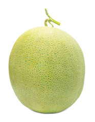 cantaloupe melon isolated