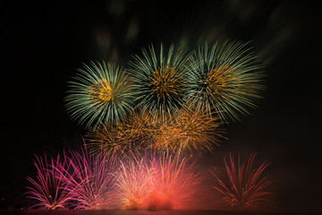a colourful of firework in black background,black