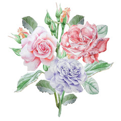 Floral card with flowers. Rose. Watercolor illustration.