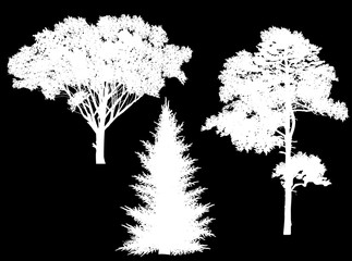 isolated three white trees silhouettes