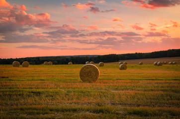 Fotoväggar - Abendsonne auf dem Feld, Strohballen, Sonnenuntergang