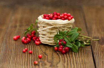 Cowberries in the basket. Forest berry.