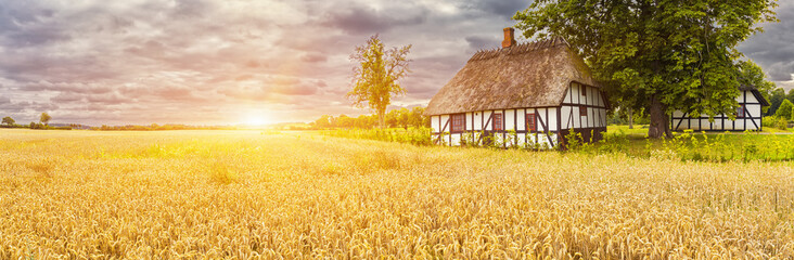 Foto op Textielframe Meloen Typical Danish Picturesque old houses and wheatfield at Sunrise