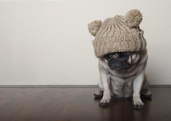 Aluminium Prints Dog Hond, Mopshond, met gebreide muts op houten vloer kijkt verdrietig