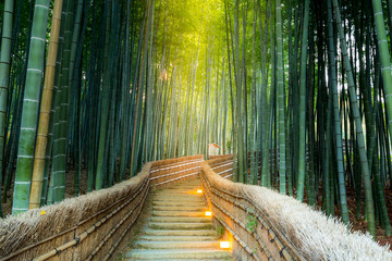Printed kitchen splashbacks Bamboo Arashiyama Bamboo Forest