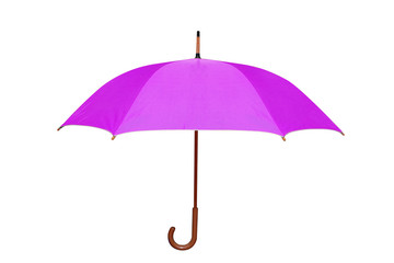 purple umbrella in white background