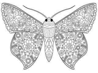 Butterfly coloring vector for adults