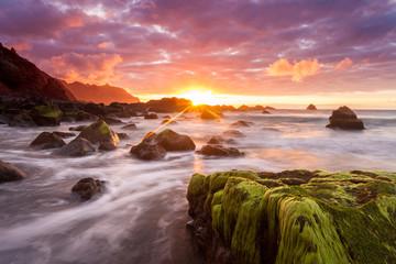 Teneriffa - Kanarische Inseln - Spanien