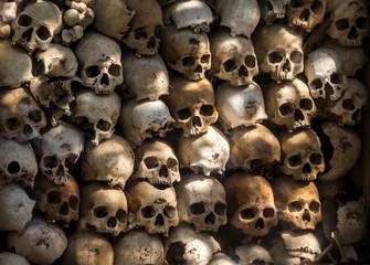 many human skulls