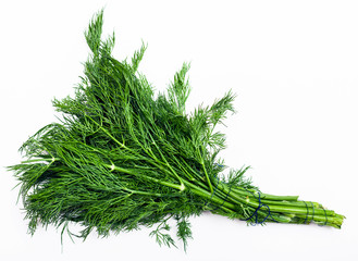 bunch of fresh cut green dill herb on white
